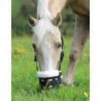grazing muzzle